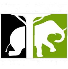 ElephantsWorld