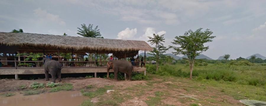 Virtual tour of ElephantsWorld
