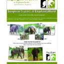 ElephantsWorld_highlights_2014-1