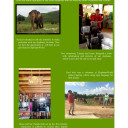 ElephantsWorld_highlights_2014-3