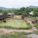 ElephantsWorld aerial photo 4