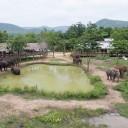 ElephantsWorld aerial photo 4