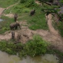 ElephantsWorld aerial photo 6