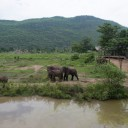 ElephantsWorld aerial photo 7
