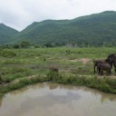 ElephantsWorld aerial photo 8